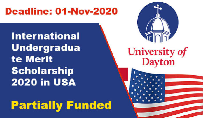 International Undergraduate Merit Scholarship 2020 in USA