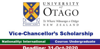 University of Otago Undergraduate Scholarship 2020 in New Zealand