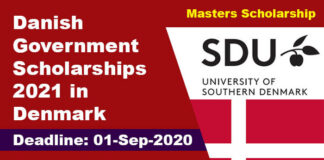 Danish Government Scholarships 2021 in Denmark