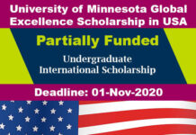 University of Minnesota Bachelors Scholarship 2020 in USA