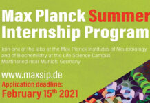 Max Planck Summer Internship 2021 in Germany [Fully Funded]